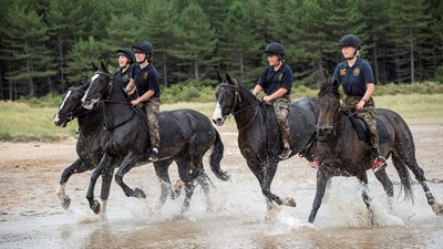APOLOND-2018-134-0060-Kings Troop RHA In Holkham.jpg