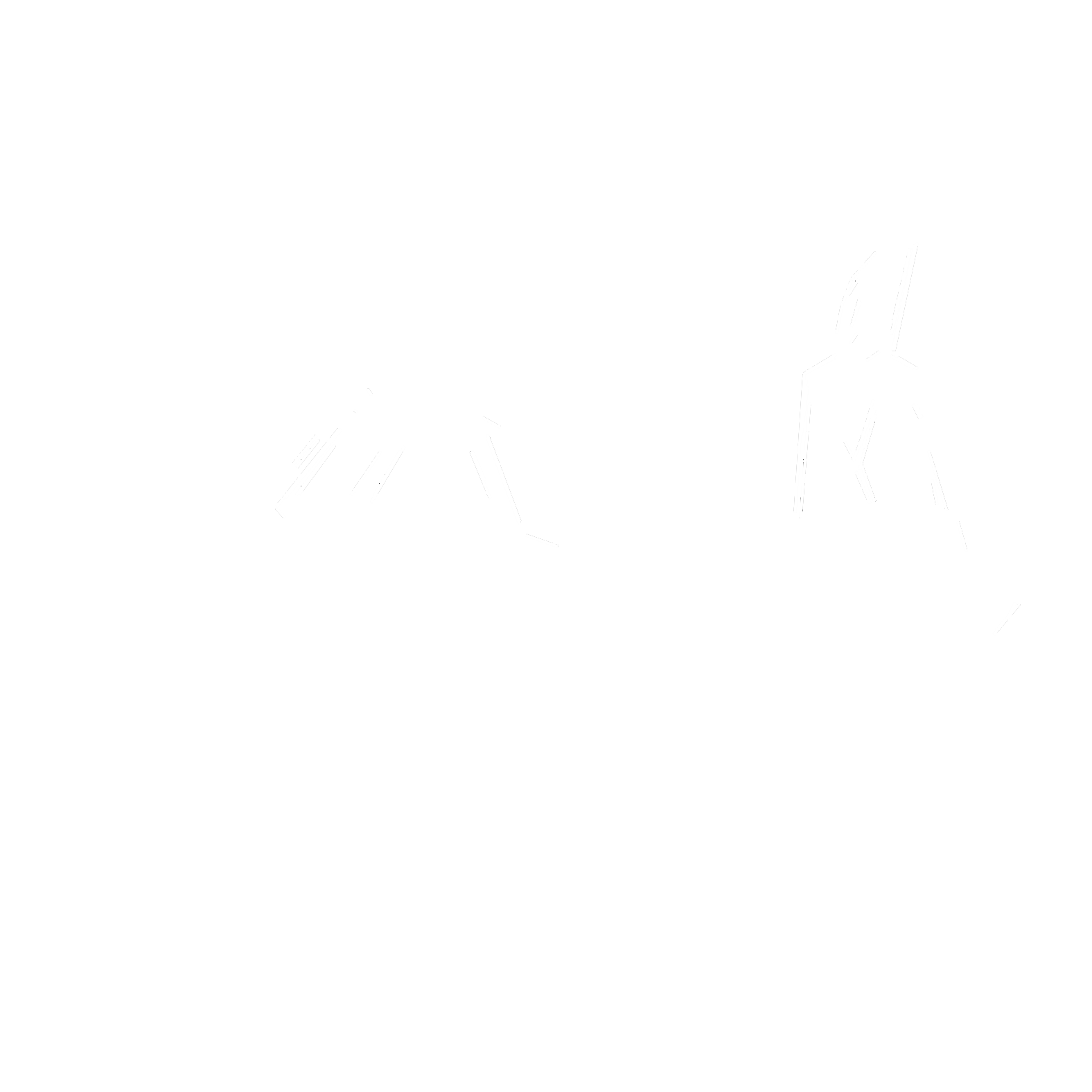 Combat boat_white.png